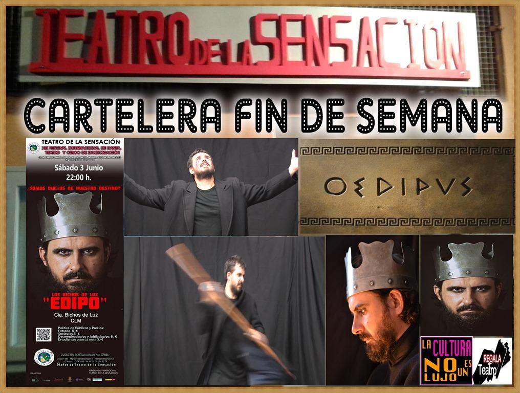 FIN DE SEMANA EDIPO BICHOS[3].jpg