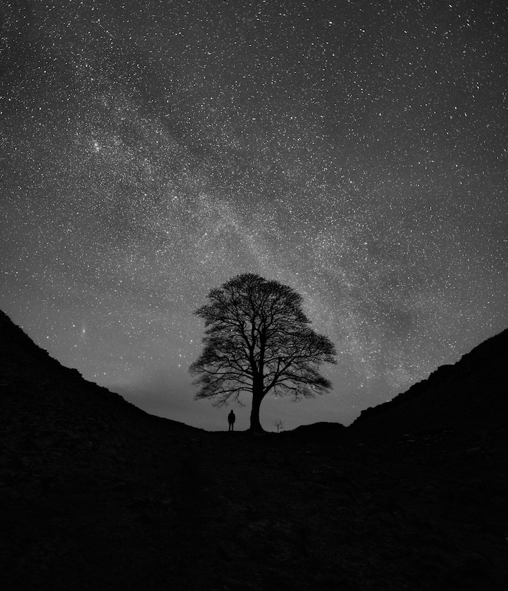 me-versus-the-galaxy_d78495f8_737x857.jpg