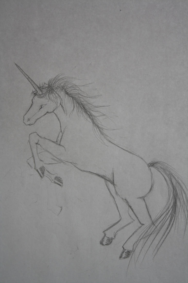 skiss_on_a_unicorn_by_smiley_1995_d308z4c-pre.jpg